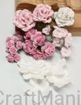 zestaw kwiatów Pink Dream