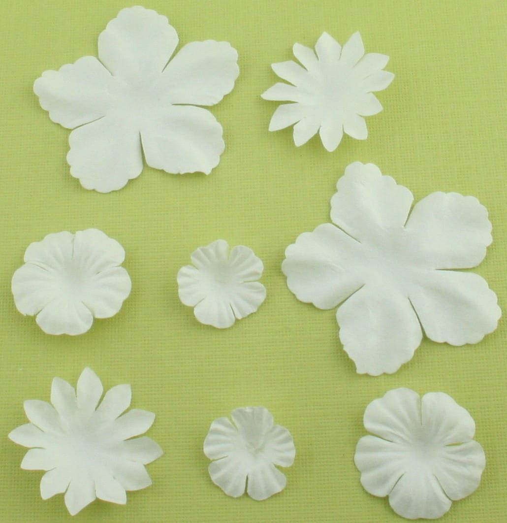 http://craftmania.pl/pl/p/papierowe-kwiatki-biale/209