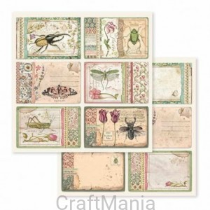 papier do scrapbookingu stamperia -  sbb590